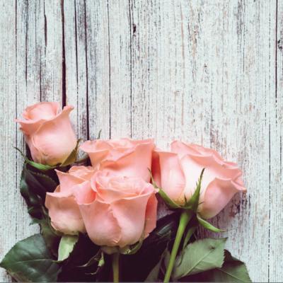 Üveg - kép infrapanel Fenix EcoSun 300 G (300 W) Képes kivitel - Roses