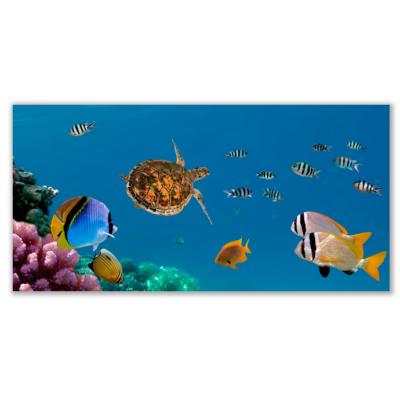 Üveg - kép infrapanel Sea (600 W) Új termék!